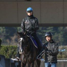 【大阪杯】出走全馬の特選情報