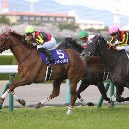 【大阪杯】ラッキーライラック 天井知らずの成長力がもたらしたGⅠ3勝目