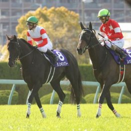 【大阪杯】上位3頭は首、首差の大接戦 明暗を分けた展開と馬場
