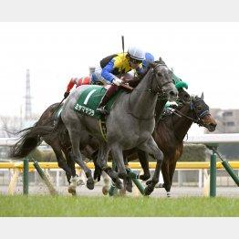 東京でクイーンC勝ち