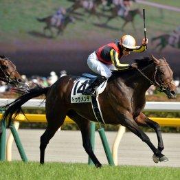 【日本ダービー】15年ドゥラメンテ 堀、矢作厩舎が皐月賞①②着で1、2番人気