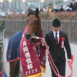 【東京優駿】ダーリントンホール 祭典で爆発する東京脚質