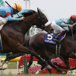 【安田記念】史上初のGⅠ馬10頭参戦 アーモンドアイを取り巻くライバル勢も超強力