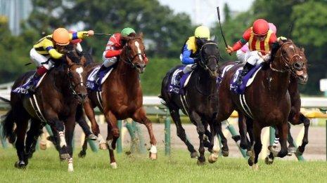 【安田記念】今年も関東馬のドラマ⁉