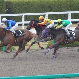 【藤岡の土曜競馬コラム・安芸S】