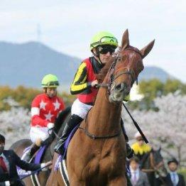【大谷の日曜競馬コラム・宝塚記念】