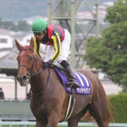 【宝塚記念】レース後の談話