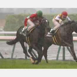 昨年の勝ち馬レッドアンシェルもエントリー