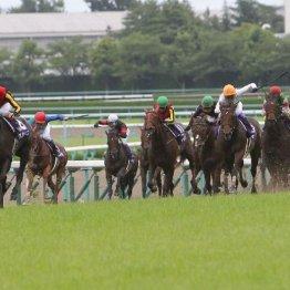 宝塚記念で明暗を分けた①着馬と④着馬
