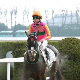 【マリナの日曜競馬コラム・阪神1R】