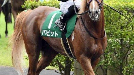 【ラジオNIKKEI賞】レース後の談話