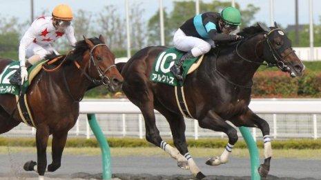 【プロキオンS】6歳の実績馬サンライズノヴァ、サクセスエナジーが一歩リード