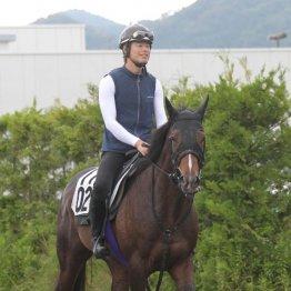 【七夕賞】出走馬の特選情報