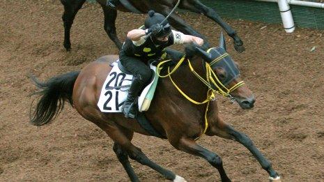 【福島テレビオープン】メイショウキョウジが持つ近年の優勝馬との2つの共通点