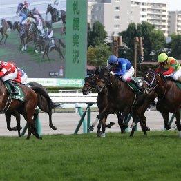 【クイーンS】友道厩舎のワン・ツー 11番人気レッドアネモスが重賞初V