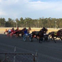 〈番外編〉ハーネス競馬 in オーストラリア(2)
