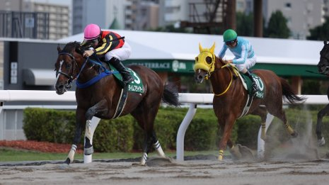 【エルムS】1番人気タイムフライヤーが初のダート重賞タイトルゲット