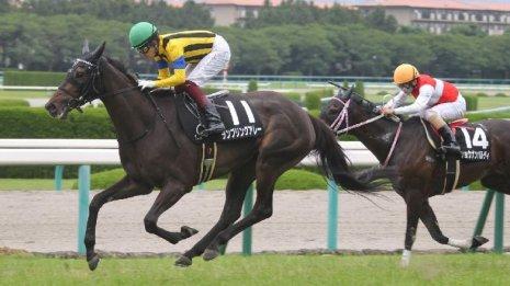 【小倉記念】友道厩舎が〝ナツコク〟開幕を飾るランブリングアレー3連勝だ