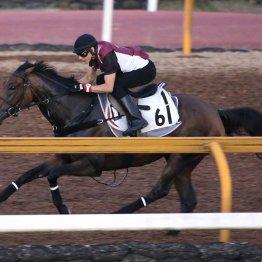 【関屋記念】夏真っ盛りならやはり牝馬