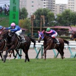 【大谷の日曜競馬コラム・キーンランドC】