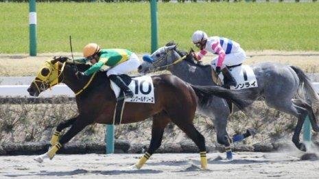 【飯島の日曜競馬コラム・東京6R】