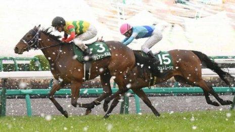 【大谷の土曜競馬コラム・府中牝馬S】