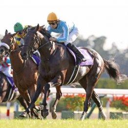 【秋華賞】史上初5戦5勝で牝馬3冠デアリングタクト 次の矛先は世代最強&日本一