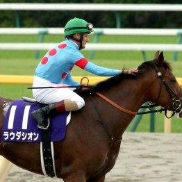 シルクにかかる東京古馬重賞完全制覇 ラウダシオンは総大将にバトンをつなげるか