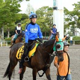 【亀井の土曜競馬コラム・新潟牝馬S】