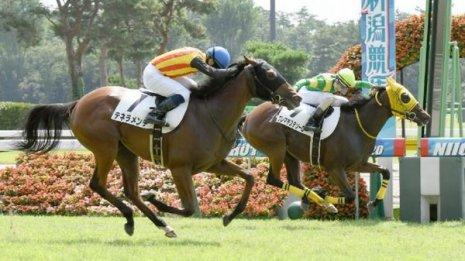 【飯島の土曜競馬コラム・東京3R】