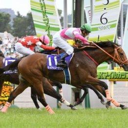 【大谷の土曜競馬コラム・富士S】