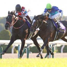 【菊花賞】コントレイルが父ディープに次ぐ無敗の3冠達成