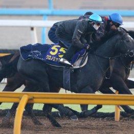 【天皇賞・秋】出走馬の特選情報