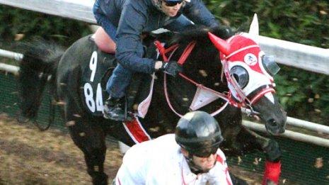 ブラックジュエリー「牝馬でもダービーに行ってほしい」