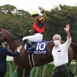 【新谷の日曜競馬コラム・マイルチャンピオンシップ】