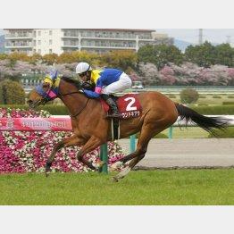 阪神牝馬Sで重賞3連勝