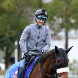 【ジャパンC】出走全馬の特選情報