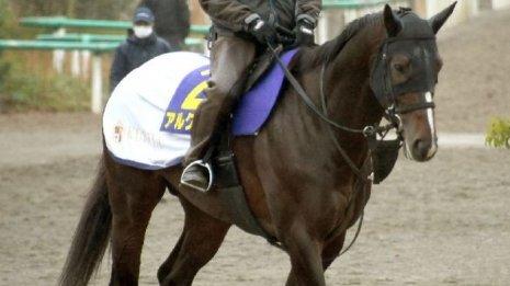 【チャンピオンズC】出走馬の特選情報