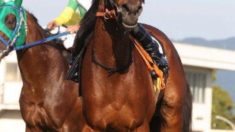 【チャレンジC】無敗の3歳牝馬VS牡馬勢