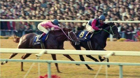 〈番外編〉競馬と出会ったはこの馬 ライスシャワーの思い出