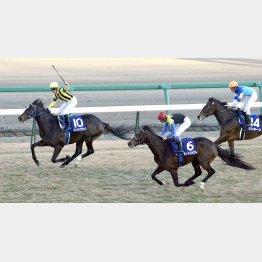 日本で初めてのGⅠ勝ちだった有馬記念も…
