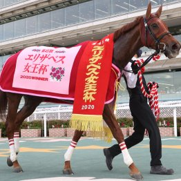 【有馬記念】ラッキーライラックが有終の美を飾ります