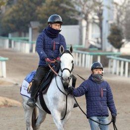 【市川の月曜競馬コラム・フェアリーS】