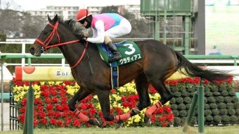 【京成杯】グラティアスがデビューから2連勝で重賞制覇