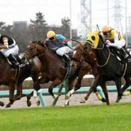 【大谷の土曜競馬コラム・初富士S】