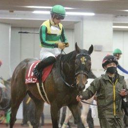 【東海S】レース後の談話