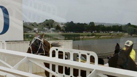 〈番外編〉オーストラリアのフェアフィールド競馬場(1)