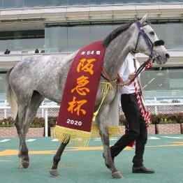 【阪急杯】インディチャンプ、ダノンファンタジー、レシステンシア GⅠ馬3頭を含む好メンバーが揃う