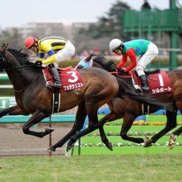 【中山記念】開幕週の馬場を生かして逃げ、先行馬が穴を出す