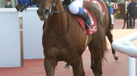 【フィリーズレビュー】ヨカヨカが16年ぶり九州産の平地重賞制覇となるか